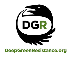 Lawyer for Deep Green Resistance 'interrogated repeatedly' at US border
